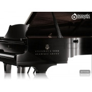 Acousticsamples AcademicGrand Steinway D Piano Library