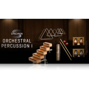 Vienna Symphonic Library Synchron Orchestral Percussion I Standard Library