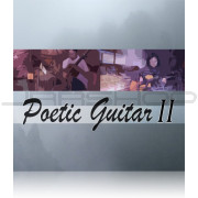 Best Service Poetic Guitar II
