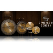 Vienna Symphonic Library Synchron Cymbals & Gongs I Upgrade To Full