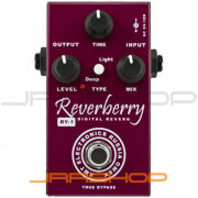 AMT Electronics RY-1 Reverberry Digital Reverb Pedal
