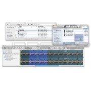 Audio Ease Snapper 2 - Upgrade from Snapper 1