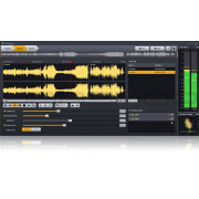 Acon Digital AudioLava 2 Upgrade