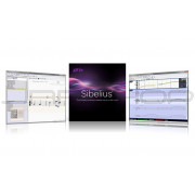 Avid Sibelius Subscription Renewal 9938-30132-00
