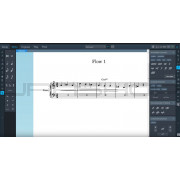 Steinberg Dorico Elements 2 Scoring Software