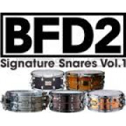 FXpansion BFD Signature Snares Vol.1