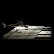 JRR Sounds Super Natural Mallets Vol.2 Vibes Hard Sample Set