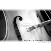 JRR Sounds Synthestra 1 Sample Set