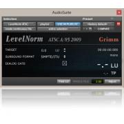 BeatRig LevelNorm Plugin