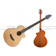 Breedlove Solo Bass Guitar