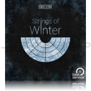 Best Service Strings of Winter