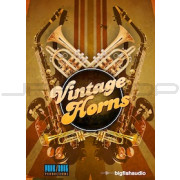 Big Fish Audio Vintage Horns 1