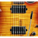 Suhr Guitars Aldrich Humbucker Pickup - Bridge